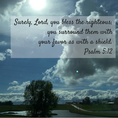 Surely, Lord, you bless the righteous; copy